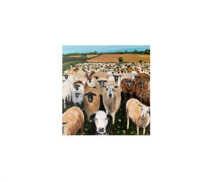 FARS sheep painting