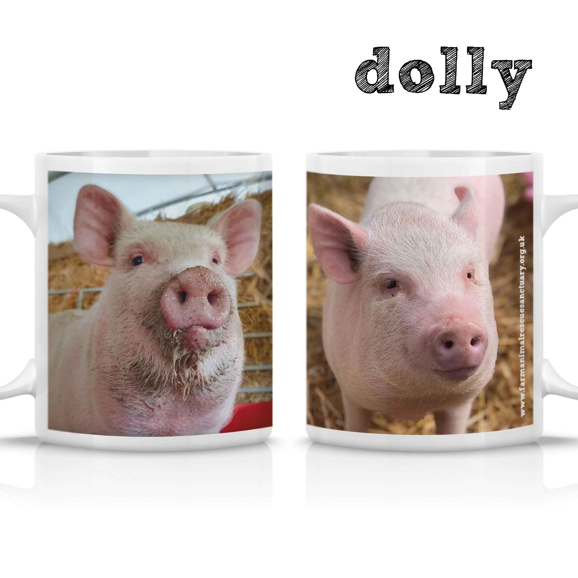 FARS Dolly Mug