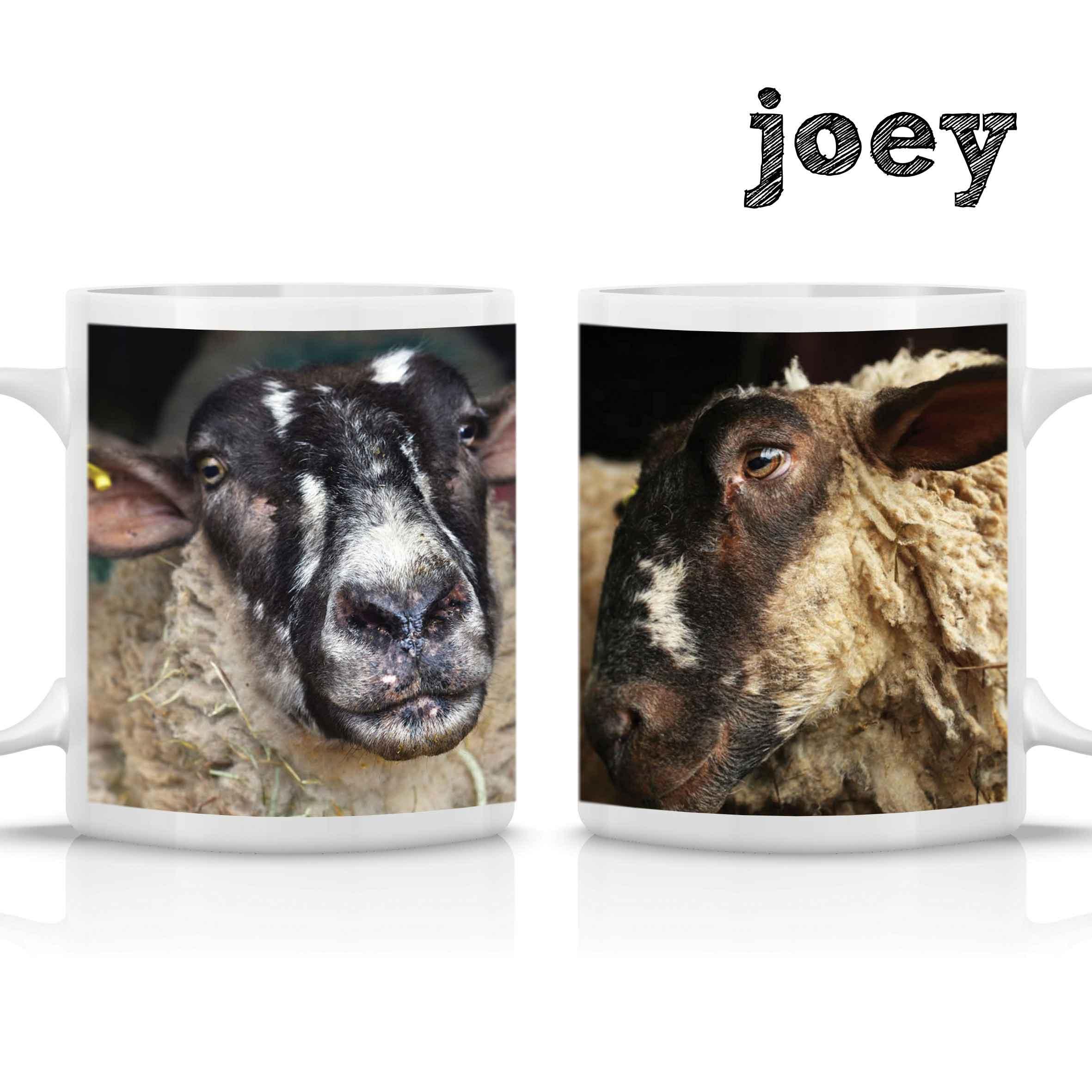 FARS Joey Mug