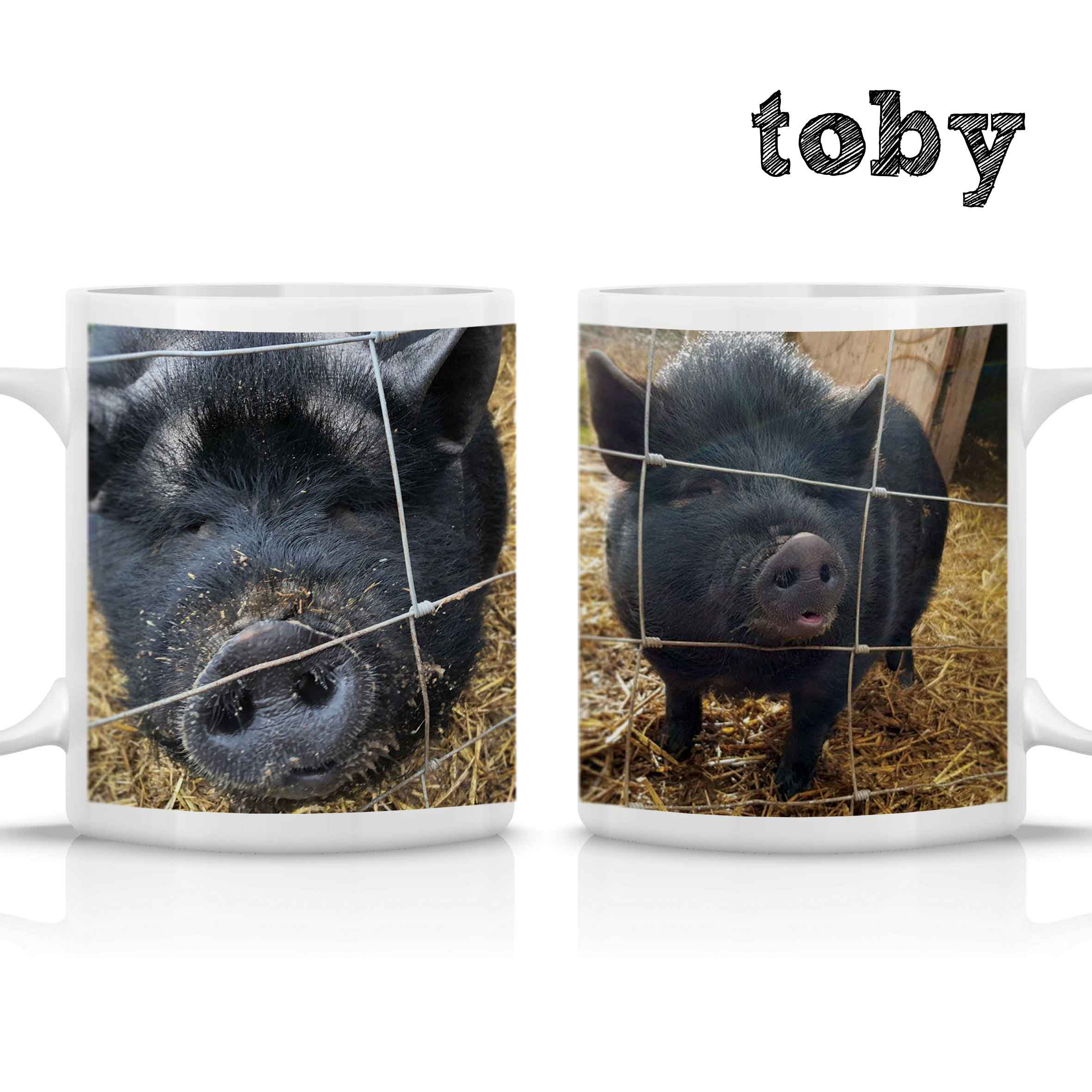 FARS Toby Mug