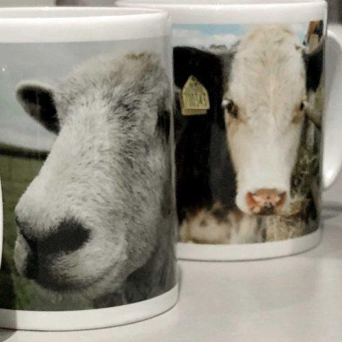 FARS Mugs