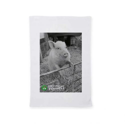 FARS Teatowel with Dolly