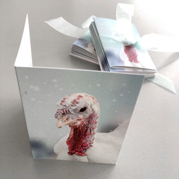 FARS Mistletoe Christmas Cards