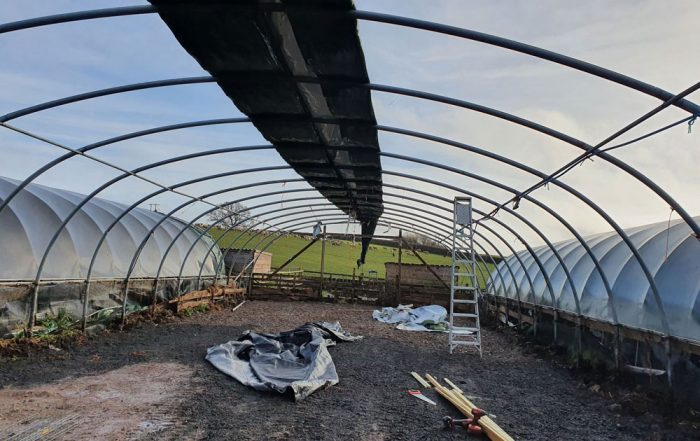 NEW Polytunnel