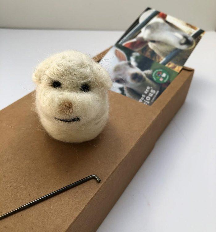 FARS Sponsor a Sheep Shearing Felting Kit